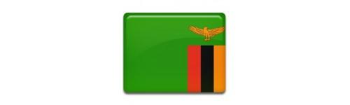 Zambia Networks