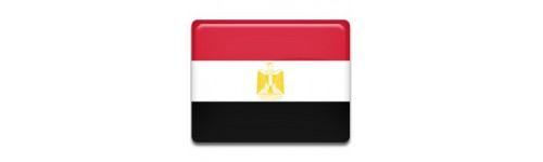 Egypt Networks
