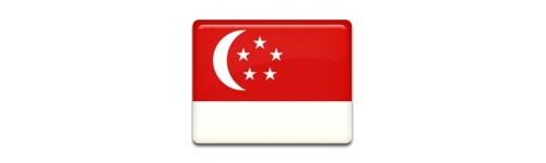 Singapur Networks