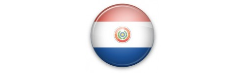 Samsung Paraguay