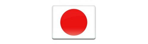 Japan Networks