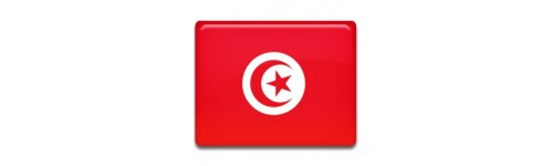 Tunisie Networks