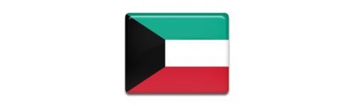 Kuwait Networks